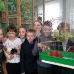 Станція юних натуралістів закликає підтримати акцію і поділитись городиною з тваринками закладу