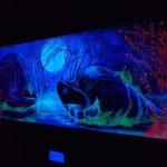 «Суб`єктівній вимір» - виставка з такою назвою відкрилася днями в Шосткинському Арт-центрі