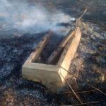 В Шостке подожгли траву на кладбище (фото)