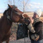 На хуторі Мисиків двоє молодиків вкрали  кобилу