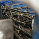 В Шостіці поліція проводить перевірку порубки лісу у с. Макове