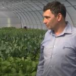 Про родину Марченків, які забезпечують шосткинців корисними овочами, вирощеними без пестицидів (Сюжет)